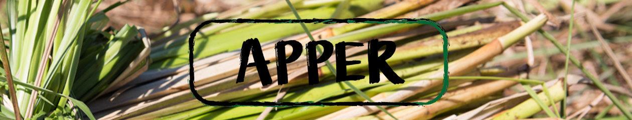 APPER
